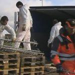 Sættevognstog væltet med 22 ton skinker